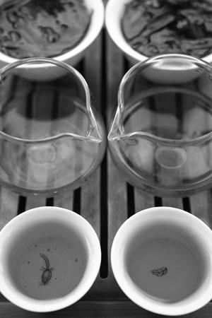 弯弓の野生茶2012年