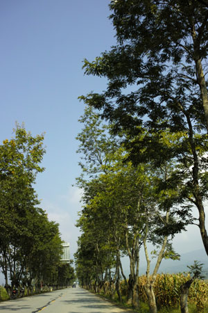 孟海の風景