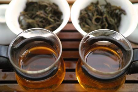 「革登」と「莽枝」の生茶プーアル茶
