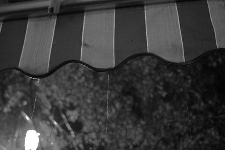 西双版納の雨
