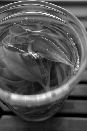漫撒山一扇磨の散茶2013年プーアル茶
