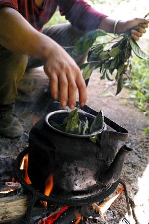 弯弓秋天焙茶2013年