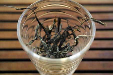 漫撒山秋の散茶2013年