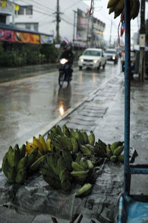 チェンコーンの雨
