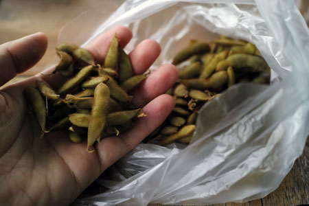 チェンコーンの自然の枝豆