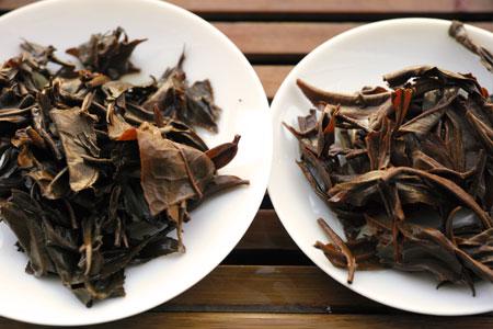 紫・むらさき秋天紅茶2011年と南糯山生態紅茶2013年