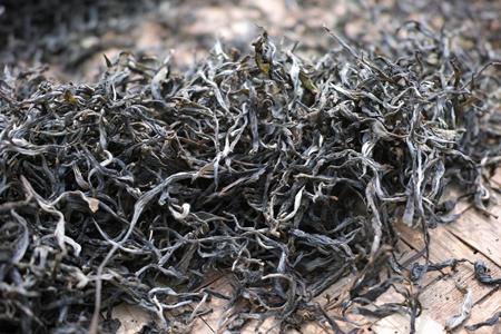 那力山ラフ族の春茶2014年プーアル茶