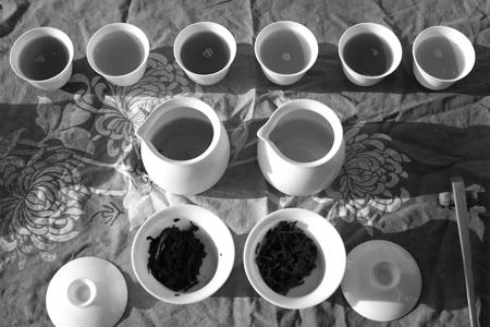 プーアル茶飲み比べ