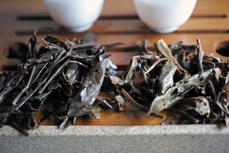 寿眉2003年白茶と易昌號大漆樹圓茶04年プーアル茶