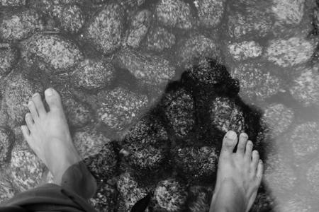 下鴨神社の水