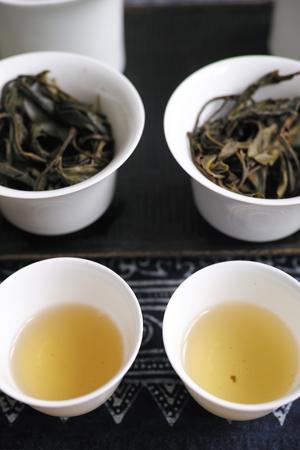 一扇磨の野生茶と一扇磨の栽培茶