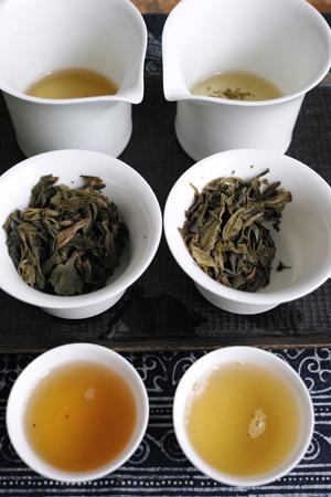 南糯古樹青餅2010年プーアル茶と南糯蜜蘭青餅2013年プーアル茶