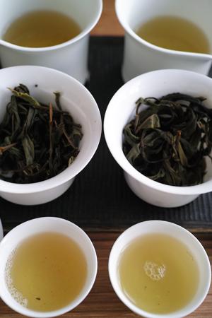 易武山秋天晒青茶2014年プーアル茶