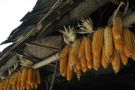 漫撒のダイ族の村