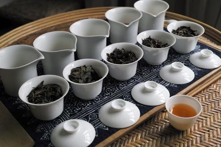 プーアール茶の試飲