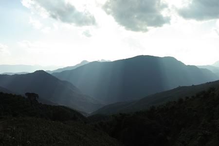 プーアール茶旧六大茶山