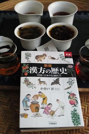 新版 漢方の歴史