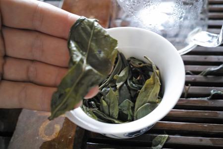 単樹のお茶