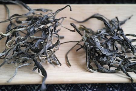 弯弓単樹B春の散茶2015年
