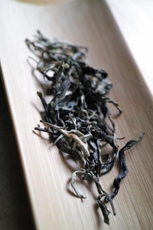 一扇磨単樹B春の散茶2015年