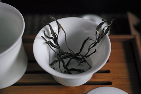 張家湾森林春の散茶2015年