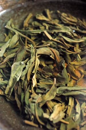 緑印プーアル茶