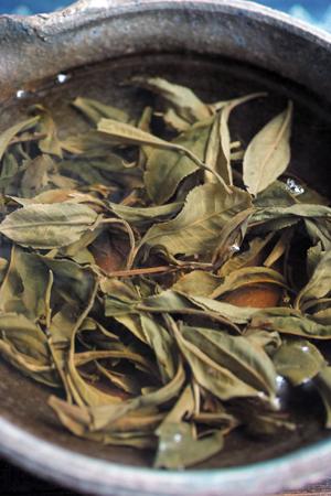 南糯山秋天散茶2013年