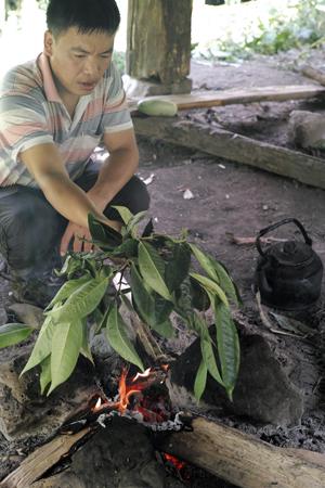 瑶族の炙り茶