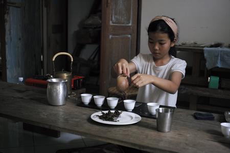 茶学チェンマイ