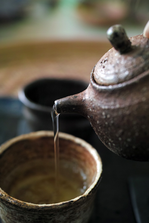 多依樹春の散茶2016年