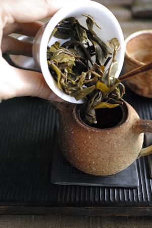 蓋碗から茶壺にバトンタッチ