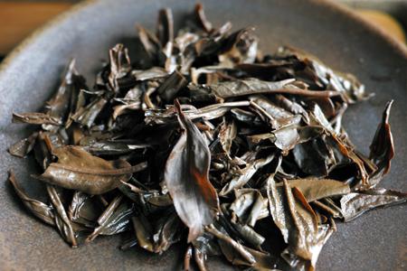 巴達古樹紅餅2010年紅茶の葉底