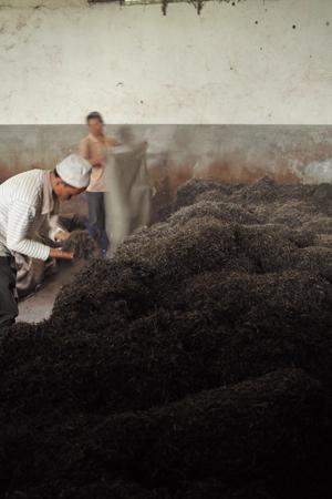 茶葉の堆積