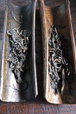 章朗古樹青餅・黄印2016年