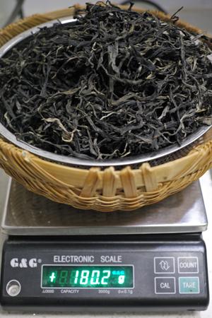 ミャンマー曼晒の古樹茶