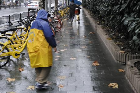 12月の雨の上海