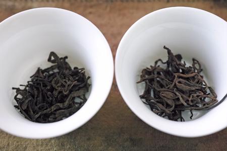 炙りと生の散茶