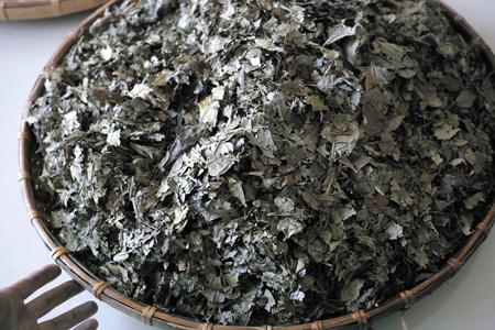 発酵後の茶葉
