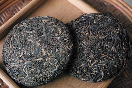 生茶と微生物発酵
