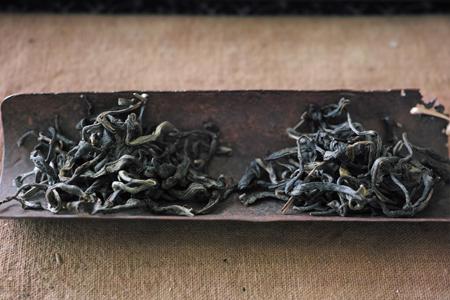 雑菌の茶葉