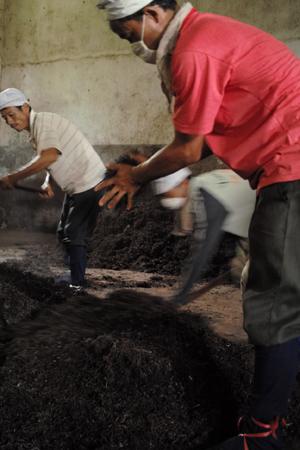 孟海の茶廠