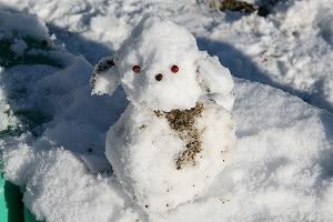雪でつくった自慢の作品