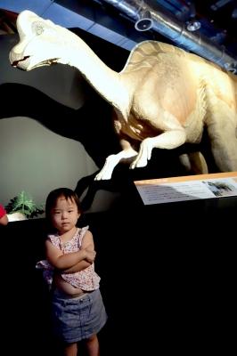 恐竜展−2