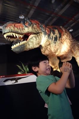 恐竜展−3