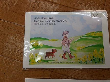 ぱこさん6.jpg