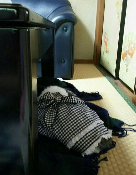 せいしき3.jpg