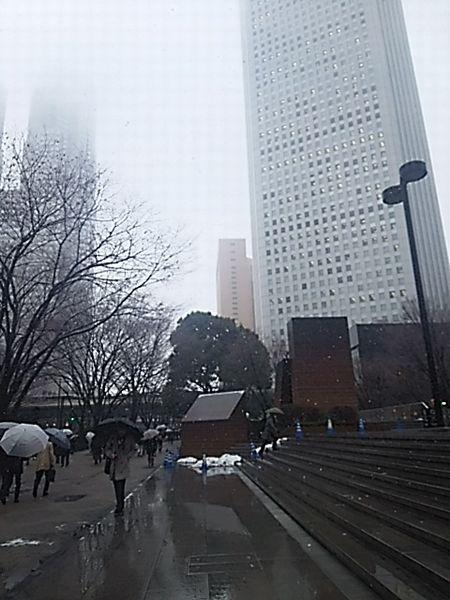 0202-1.jpg
