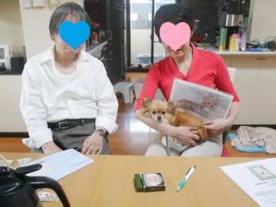 ほきとら4.jpg