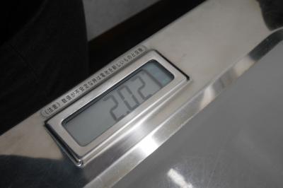 P2460807.JPG