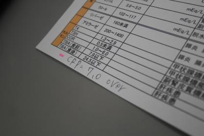 P2480628.JPG